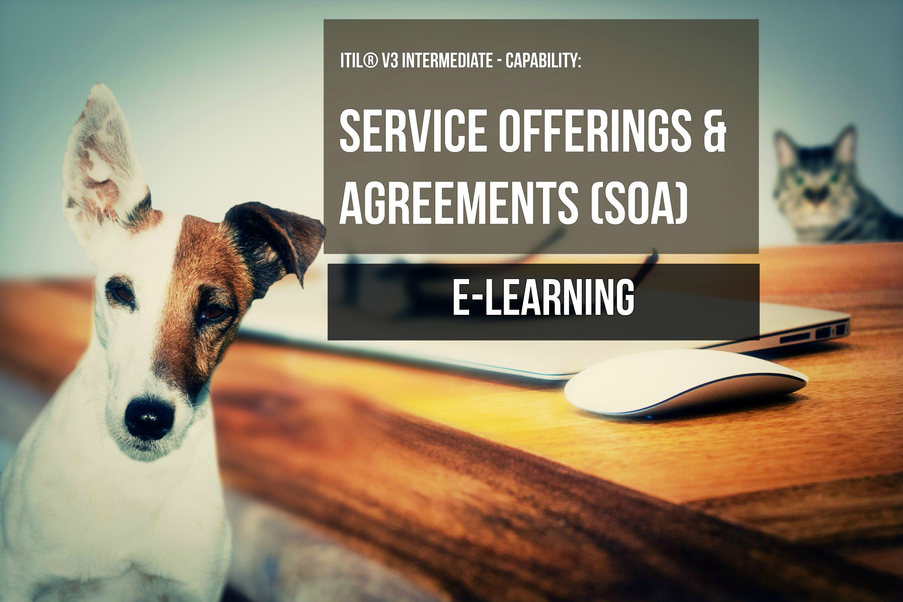 ITS Partner - ITIL Service Offerings and Agreements e-learning and certification