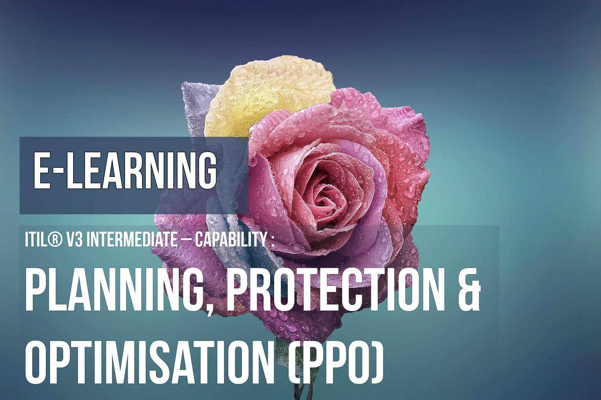 ITS Partner - ITIL Planning Protection Optimisation e-learning and certification