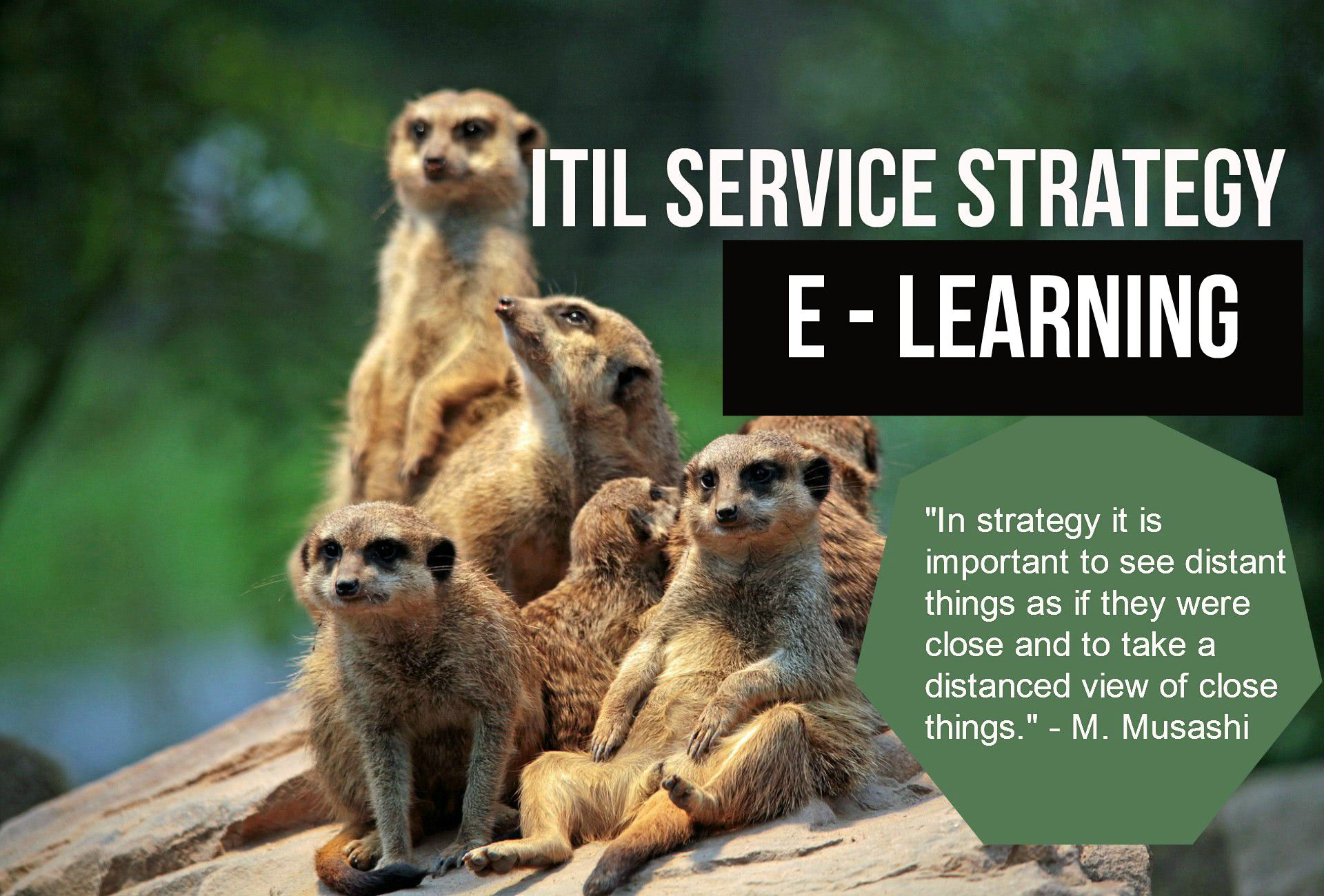 ITS Partner - Edukacija - ITIL Service Strategy education and certification